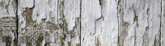 cropped-white-wood-texture-fence-texturepalace4.jpg